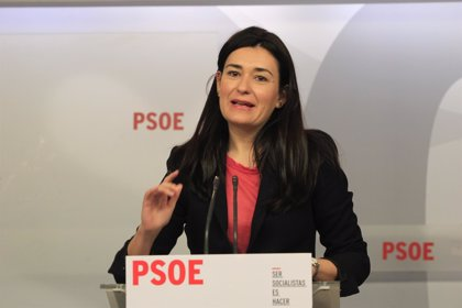 PSOE dice que el descenso en IVE demuestra que PP debe renunciar a reformar la ley y retirar su recurso ante TC