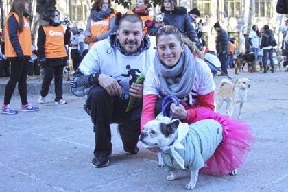 Más de 600 perros y sus dueños participan en la Sanperrestre en contra del sacrificio de los animales abandonados
