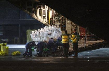 Enferma de ébola en Reino Unido recibe plasma de un superviviente