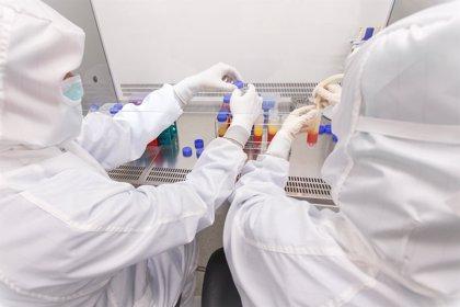 Nace en Valencia el primer banco de células madre adultas de España para tratar enfermedades futuras