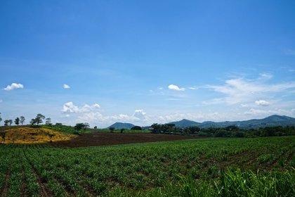 Seis personas mueren el primer día de 2015 en El Salvador