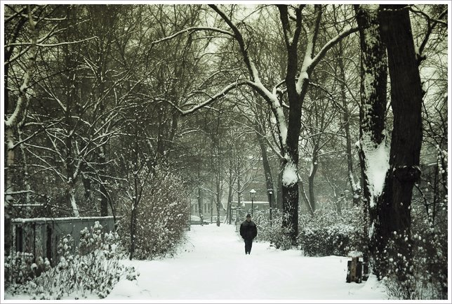 Frío, nieve, invierno
