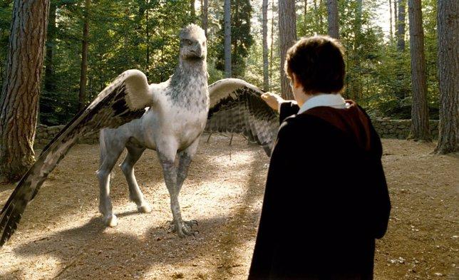 Buckbeak, Harry Potter