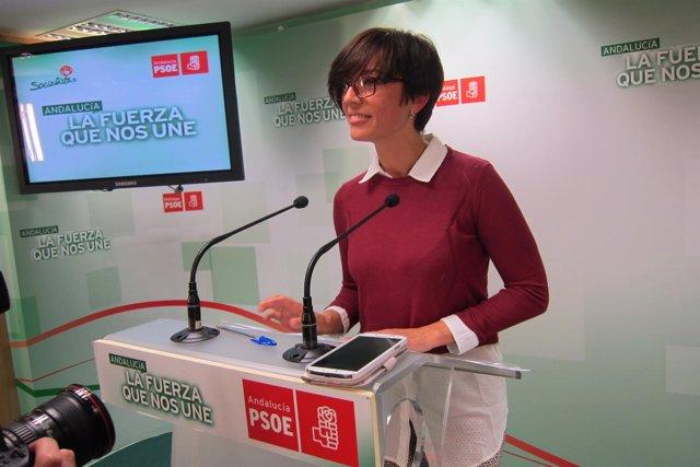 Gámez psoe lista municipales elecciones