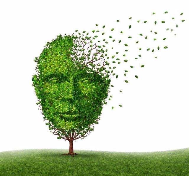 Alzheimer, demencia