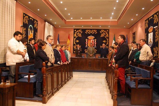 Pleno de Alcalá de Guadaíra.