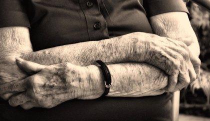 Descubren un nuevo mecanismo molecular clave para la formación de la piel