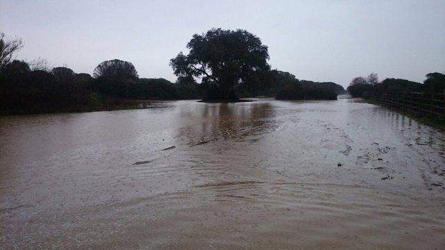 Camino de Hinojos-El Rocío, tras las lluvias.