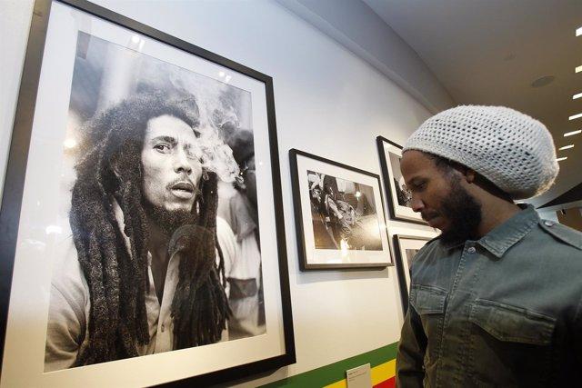David 'Ziggy' Marley contempla una foto de su padre, Bob Marley.