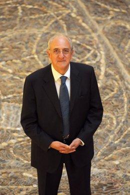 José Manuel Temiño, consejero delegado de Grupo Antolin