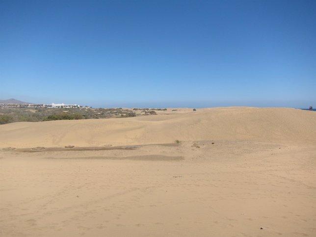 Dunas de Maspalomas, en San Bartolomé de Tirajana (Gran Canaria)