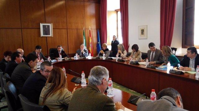 Imagen de la Diputación Permanente