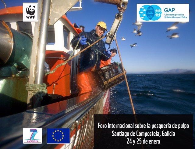 Foro Internacional sobre la Pesquería del Pulpo en Santiago (24 y 25 de enero)