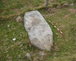 Representación megalítica en el Alto Guriezo