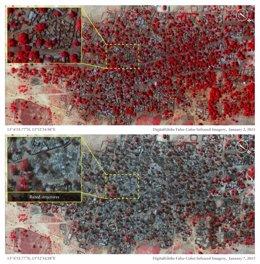 Antes y después del ataque de Boko Haram en Baga, Nigeria