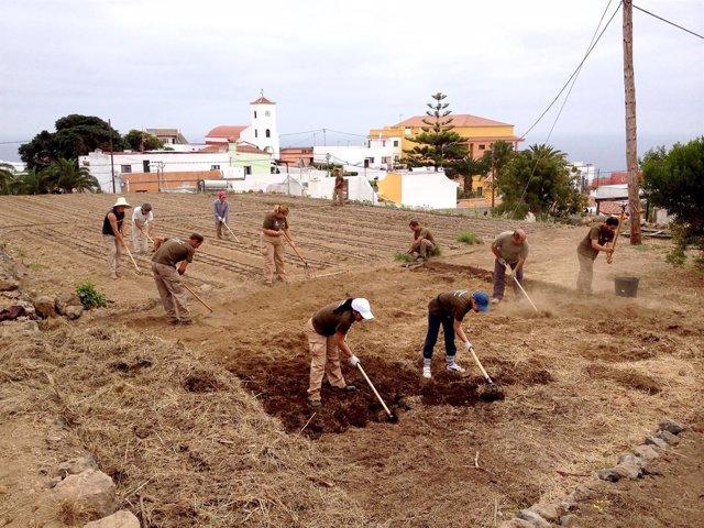 Taller de agricultura ecológica