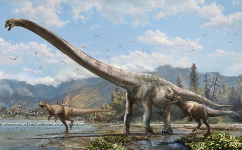 Descubren un dinosaurio dragón en China