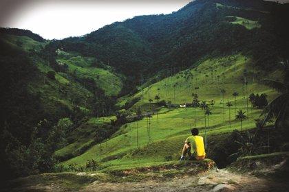 El medio ambiente, una víctima más del conflicto colombiano