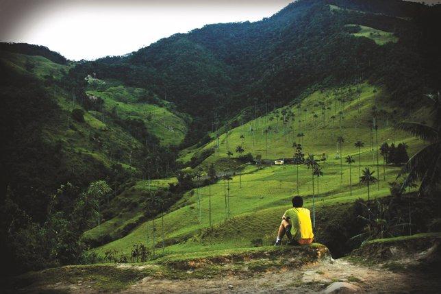 'Realismo Mágico' Colombia