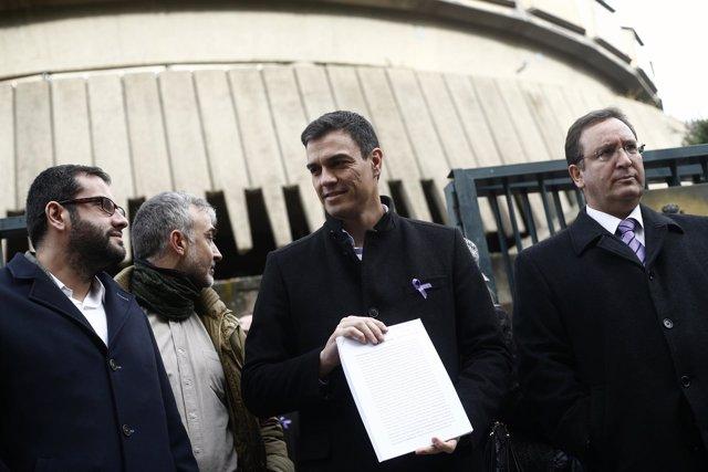 Pedro Sánchez presenta un recurso contra la Ley de Propiedad Intelectual