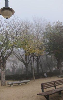 Niebla, nublado, frío, inverno, nebuloso