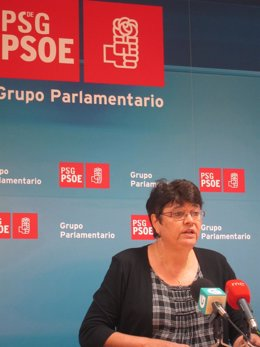 La Diputada Del Psdeg, Marisol Soneira