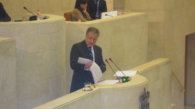 Arasti en el Pleno del Parlamento
