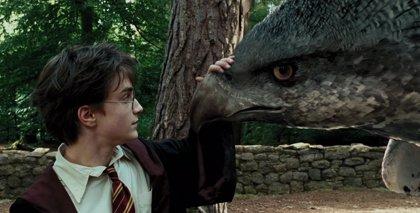 Arranca el casting del spin-off de Harry Potter