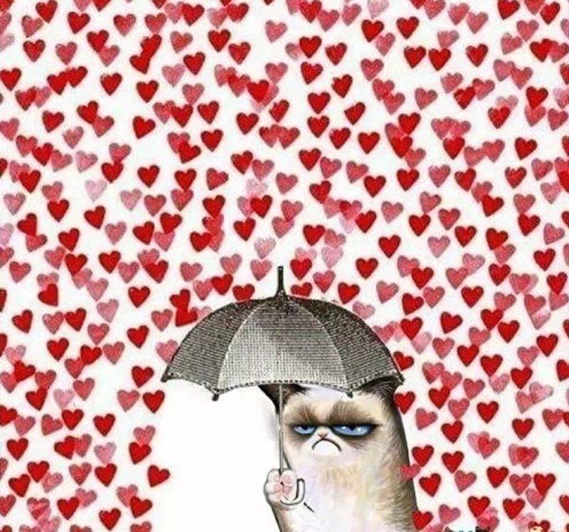 Felicitaciones De San Valentin Por Whatsapp Con Divertidos Y
