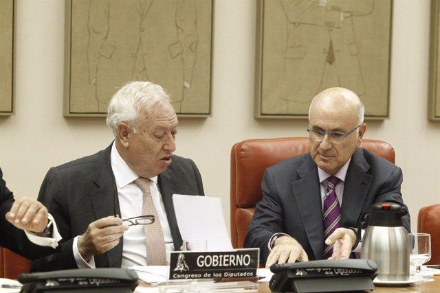 José Manuel García Margallo y