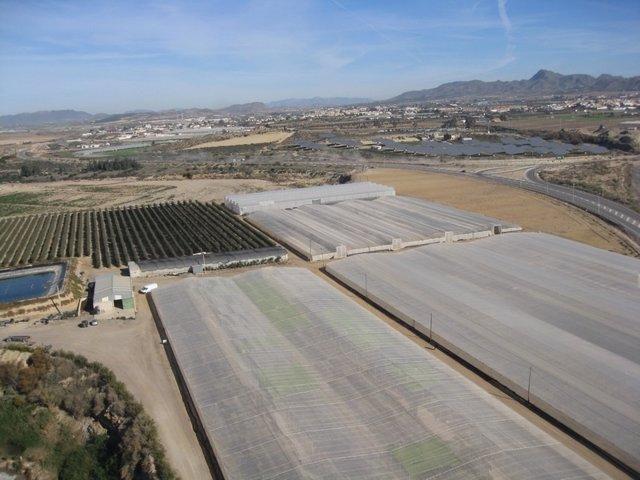Imagen de invernaderos en Almería