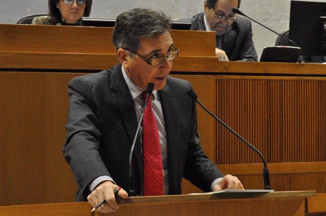 El consejero Ricardo Oliván