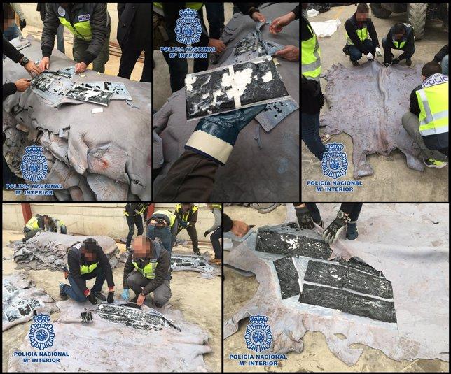 Policía interviene 510 kilos de cocaína