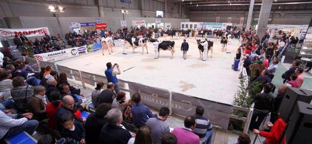 Feria Gandagro 2014