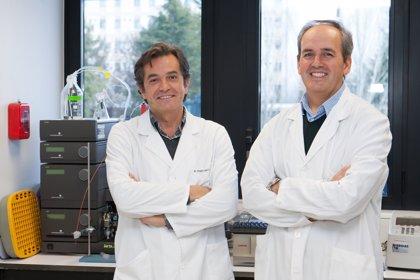 La Fundación Ramón Areces financia una investigación del CIMA sobre leucemias, linfomas y mielomas