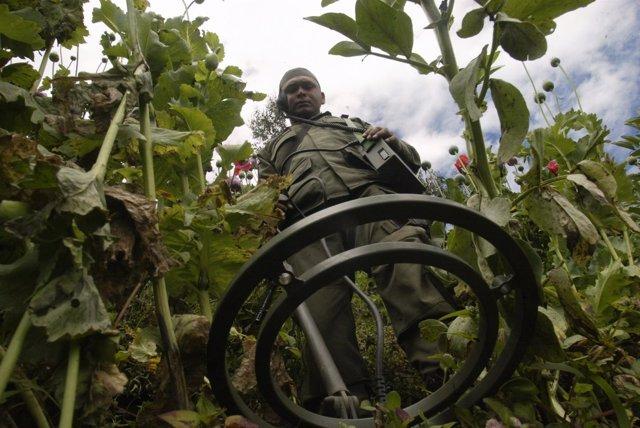 Un policía colombiano busca explosivos abandonados en Colombia