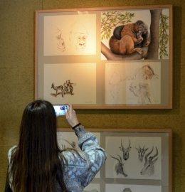 Exposición en el Bioparc