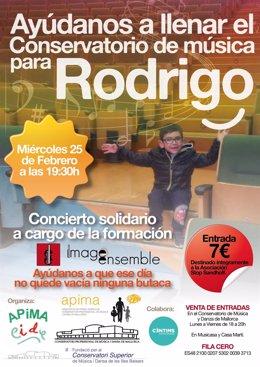 Cartel concierto solidario por Rodrigo, un niño que sufre Sandhoff