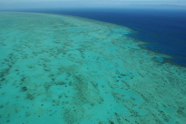 Arrecife, arrecifes, barrera de coral