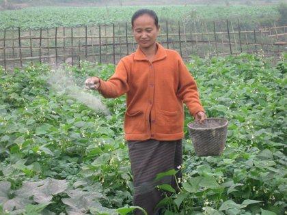 RSC.-La ONG Helen Keller International, Premio BBVA de Cooperación al Desarrollo por sus programas agrícolas