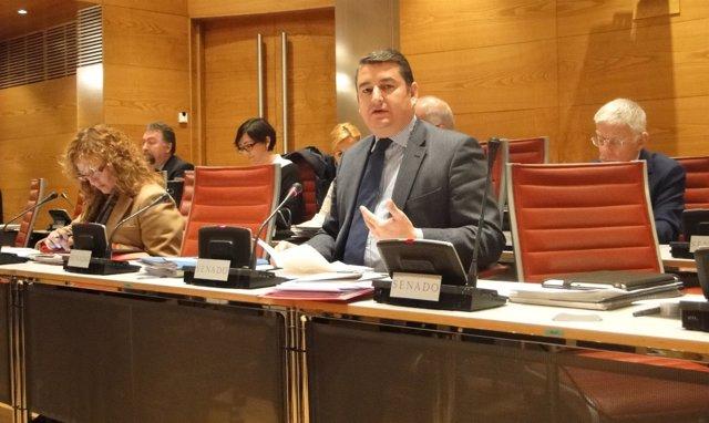 El senador del PP Antonio Sanz en la Comisión de Entidades Locales