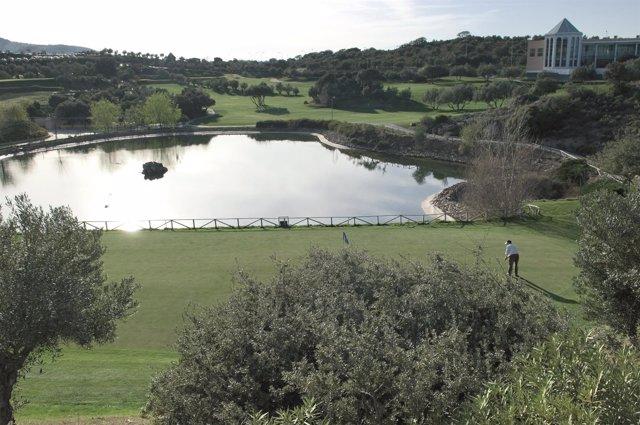 Golf mejora ocupación turismo 2015