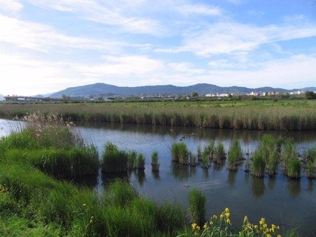 Entorno de la bahía de Santander