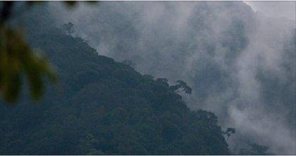 Arqueólogos hallan en Honduras la mítica 'Ciudad Blanca'