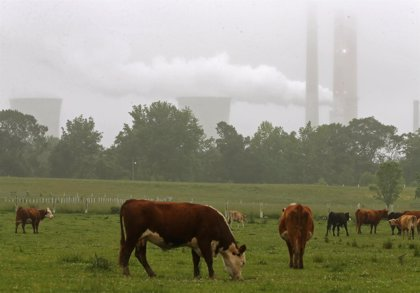 La contaminación aumenta el riesgo de ictus