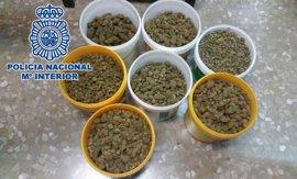 Incautados 7 kilos de cogollos de marihuana ocultos en botes de pintura