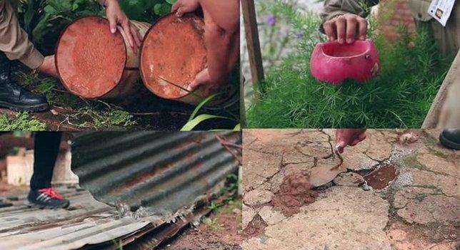 Control del Chikungunya en Paraguay