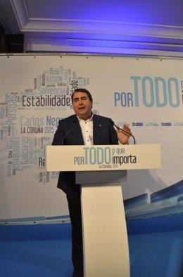 El alcalde de A Coruña, Carlos Negreira