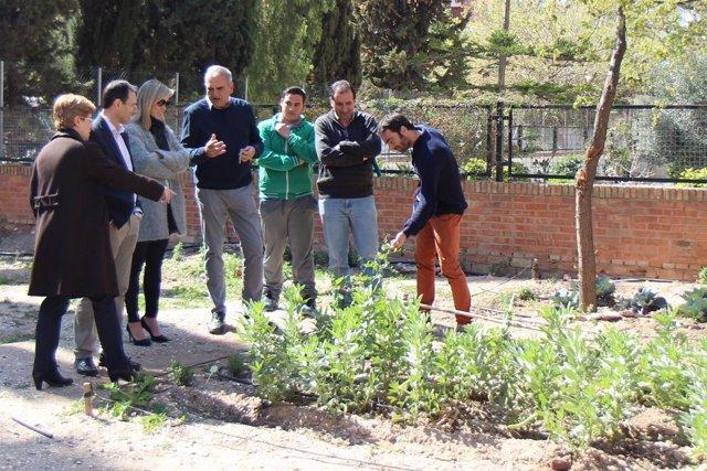 Alba visita andalucia profundiza proyectos centros en horario extraescolar