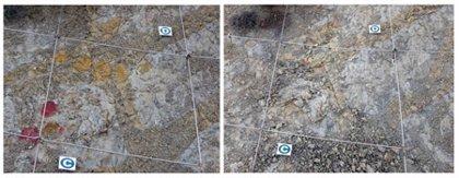 Un ataque vandálico daña el yacimiento más importante de nidos de dinosaurio de Europa